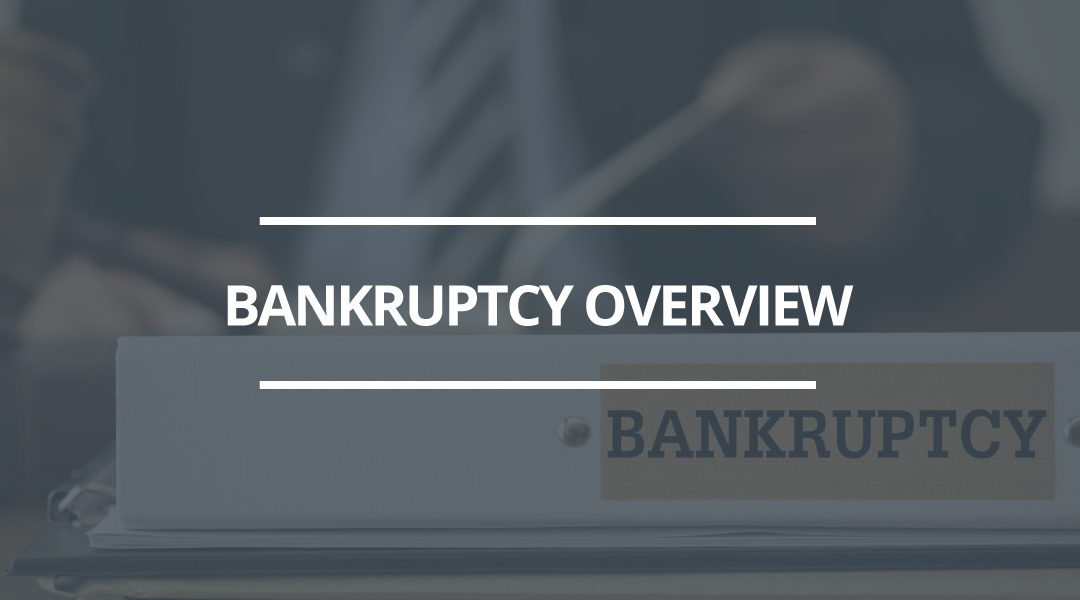The Bankruptcy Process